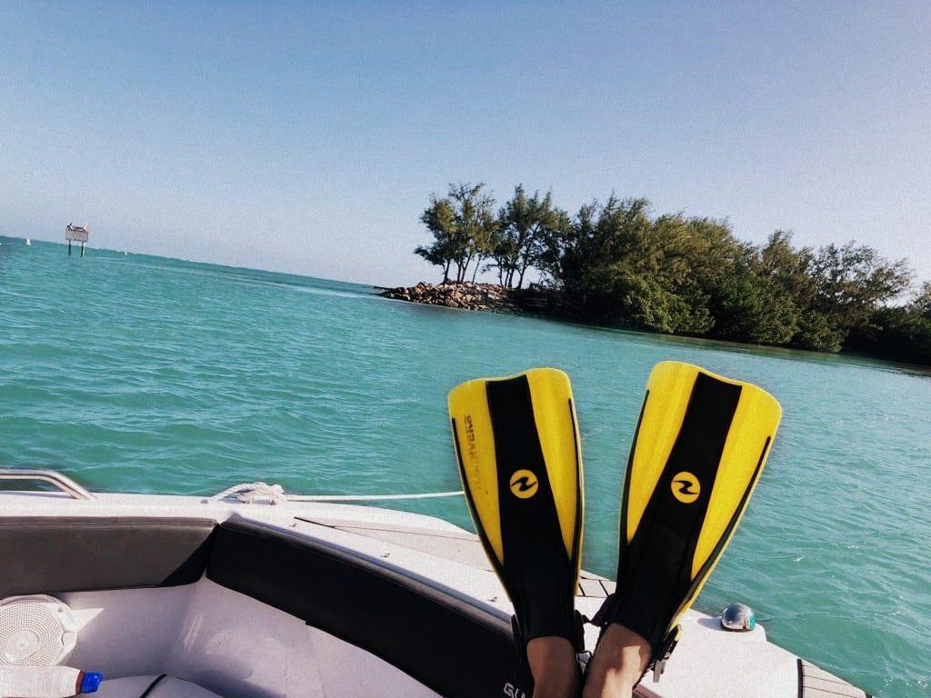snorkeling in Miami Beach