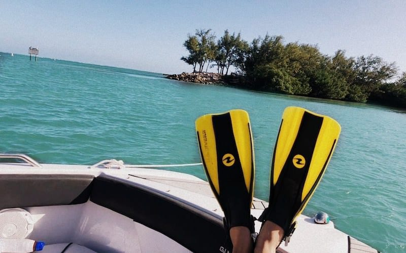 Discover Virginia Key's water with our snorkeling boat tour