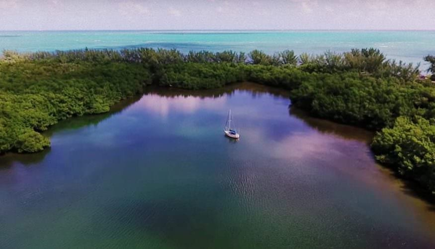 Enjoy a day in Virginia Key with our boat tour!